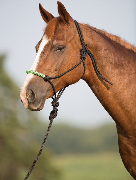 Mustang Bling Nose Rope Halfter mit Strick